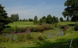 Golfplatz-24