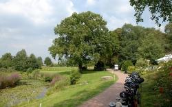 Golfbaan-12