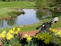 Golfbaan-6